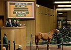 Hard Spun Colt Tops Early Trade at Keeneland