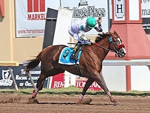 Haveyougoneaway wins the Flashy Lady Stakes.