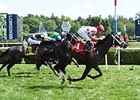 Bourbon Stakes Proves Popular as 14 Enter