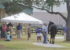 OBS Under Tack Show Set for Oct. 12