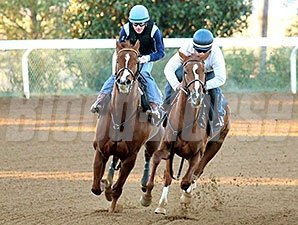 Judy the Beauty works under Kieren Fallon at Keeneland Oct. 19.
