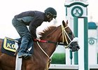 Lady Shipman worked five furlongs in 1:01 3/5 at Keeneland Race Course the morning of Oct. 22.