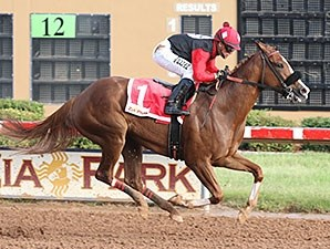 Belleofthebeach wins the 2015 Chaves County Stakes.