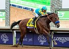 "Triple Crown winner American Pharoah<br><a target=""blank"" href=""http://photos.bloodhorse.com/BreedersCup/2015-Breeders-Cup/Breeders-Cup-Classic/i-Q9QdvQ8"">Order This Photo</a>"