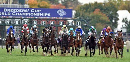The field comes by the grandstand for the first time in the Breeders' Cup Juvenile Turf (gr. IT).