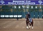 Slideshow: Breeders' Cup Week