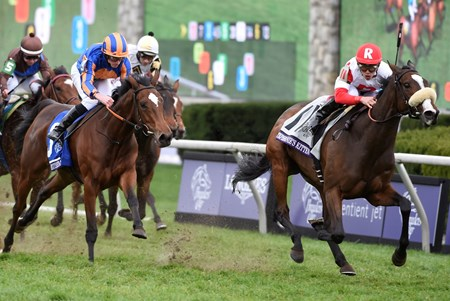 Four years after claiming her first Breeders' Cup victory, Stephanie's Kitten returned to a Breeders' Cup winner's circle again after a courageous rally to win the $2 million Breeders' Cup Filly & Mare Turf (gr. IT) at Keeneland.