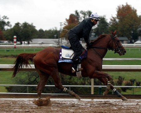 Rated R Superstar (Breeders' Cup Juvenile) on the track at Keeneland on October 28, 2015. Photo By: Chad B. Harmon