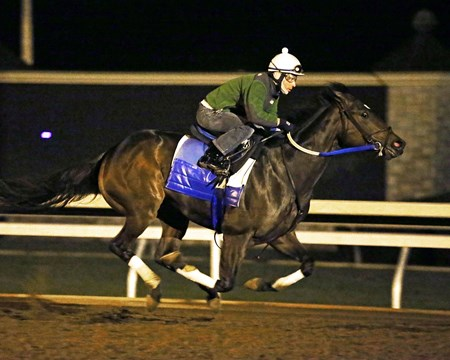 Nickname - Morning Workout - Keeneland Race Course - 101915