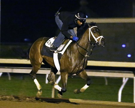 Sweet Whiskey - Morning Workout - Keeneland Race Course - 102315
