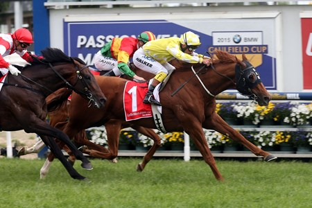 Criterion and jockey Michael Walker come home strong to win the Caulfield Stakes in Australia.