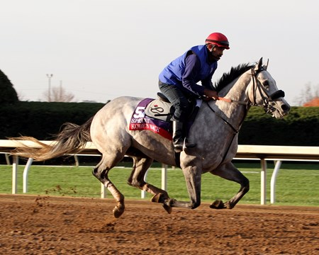 Kobe's Back (Breeders' Cup Sprint) on the track at Keeneland on October 29, 2015. Photo By: Chad B. Harmon