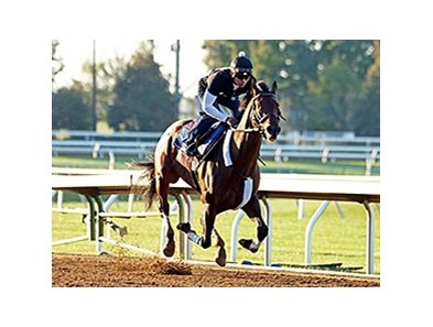 Runhappy worked six furlongs in 1:09 4/5 on Oct. 21.