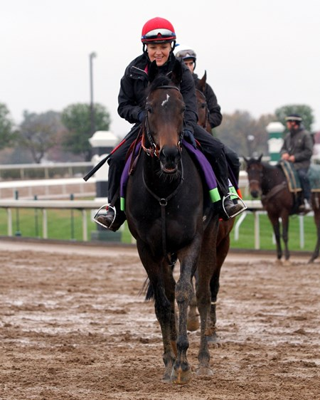 Impassable (Breeders' Cup Mile) on the track at Keeneland on October 27, 2015. Photo By: Chad B. Harmon