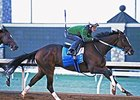 Untapable Seeks Return to Form