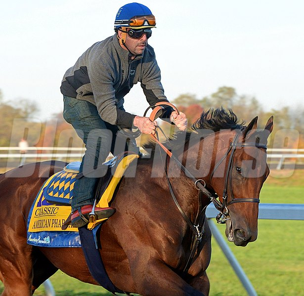 Caption: American Pharoah on the training track at Keeneland.