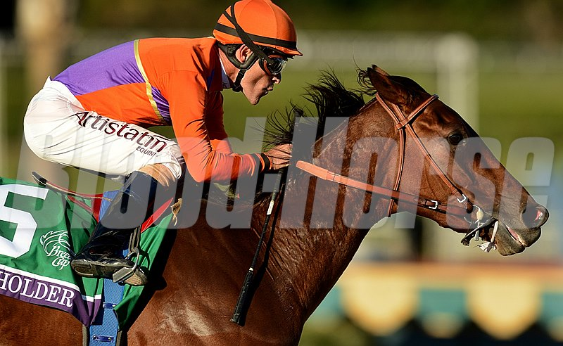Beholder wins the Breeders' Cup Distaff (gr. 1) Jockey: Gary Stevens Santa Anita Park, Arcadia, CA Purse: $2,000,000 Date: November 1, 2013 Class: Grade I TV: NBC Sports Network Age: 3YO&UP Race: 10 Distance: 1 1/8 miles Post Time: 4:35 PM PT Photo by: Wally Skalij
