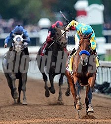 American Pharoah wins the 2015 Breeders' Cup Classic.