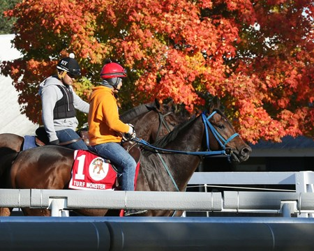 Mongolian Saturday - Morning Workout - Keeneland Race Course - 102015