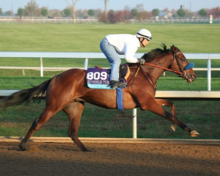 Dressed in Hermes - Morning Workout - Keeneland Race Course - 102315