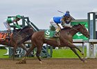 Brody's Cause, Destin Top Tampa Bay Derby
