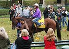 Beholder schools in the Keeneland paddock Oct. 25.