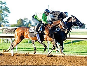 Rachel's Valentina, outside, Stopchargingmaria, inside, work at Keeneland Oct. 5.