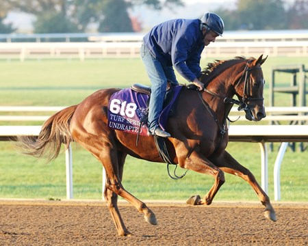 Undrafted - Morning Workout - Keeneland Race Course - 102315