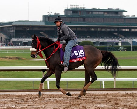 Private Zone (Breeders' Cup Sprint) on the track at Keeneland on October 27, 2015. Photo By: Chad B. Harmon