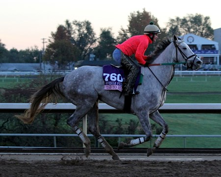 Tap to It (Breeders' Cup Juvenile Fillies) on the track at Keeneland on October 29, 2015. Photo By: Chad B. Harmon