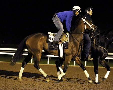Dame Dorothy- Morning Workout - Keeneland Race Course - 102315