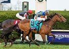 Found Set for Return in Listed Stakes