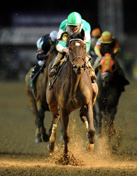 (November 4, 2011) Royal Delta, Jose Lezcano up, wins the Breeders Cup Ladies Classic at Churchill Downs...
