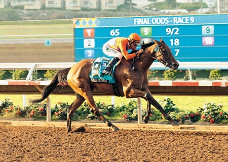 Spendthrift Farms'  5-year-old mare Beholder, and jockey Gary Stevens dusted the boys to easily win the Grade I $1,000,000 TVG Pacific Classic Saturday, August 22, 2015 at Del Mar Thoroughbred Club, Del Mar, CA.