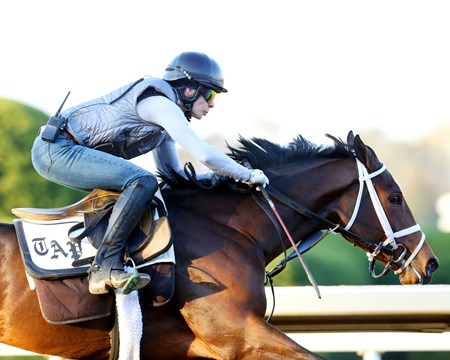 Rachels Valentina - Morning Workout - Keeneland Race Course - 102315