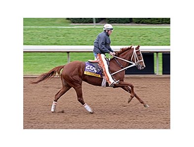 I'm a Chatterbox
