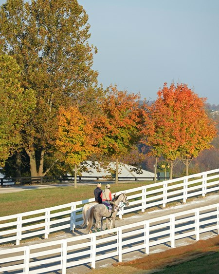 Caption: Tap to It