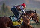 American Pharoah worked six furlongs in 1:10 4/5 Tuesday morning, Oct. 20, at Santa Anita Park.