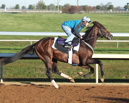 Greenpointcrusader - Morning Workout - Keeneland Race Course - 101915