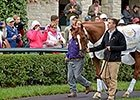 Wise Dan Parades at Keeneland