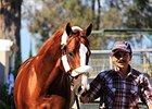 California Chrome returns to Los Alamitos Race Course on October 13.