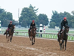 From the Aidan O'Brien stable, War Envoy (right) leads fillies Outstanding and Easter at Keeneland