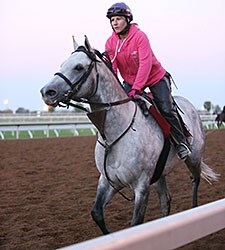 Holy Lute - Keeneland, October 20, 2015.
