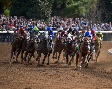 Final turn of the the Breeders' Cup Dirt Mile (gr. I).