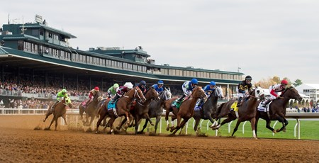 The field rounds the first turn in the Breeders' Cup Dirt Mile (gr. I).