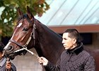 Songbird Ready to Score in Juvenile Fillies
