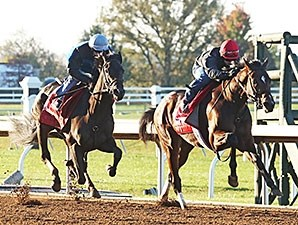Conquest Daddyo (outside) and Sky Fire (inside) - Keeneland, October 21, 2015.