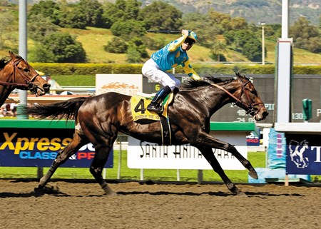 Pioneerof the Nile and Garrett Gomez win the Grade I $750,000 Santa Anita Derby Saturday, April 4, 2009 at Santa Anita Park.