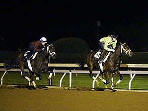 Rachel's Valentina (front) and Sweet Ella (back) - Keeneland, October 16, 2015.