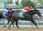 Pretty N Cool wins the Matron Stakes.